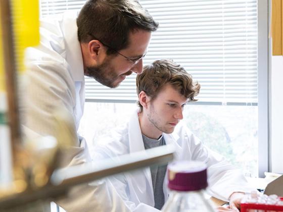 Jason S. McLellan, associate professor of molecular biosciences, and graduate student Daniel Wrapp work in the McLellan Lab